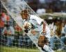 Precisando fazer 3 gols de diferença Giovanni busca bola no fundo da rede no Pacaembu - Santos 5 x 2 Fluminense Brasileirão 1995